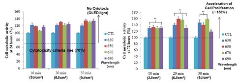 그림 6. 웨어러블 OLED 패치의 안전성 및 세포 증식 효과왼쪽 그래프와 같이 실제 사람의 섬유모세포에서 OLED를 조사한 후 세포독성평가 결과e cll viability가 100% 이상으로, 세포독성이 없는 안전성을 확인하였다. 또한 오른쪽 그래프와 같이 OLED 조사하였을 경우 사람의 섬유모세포가 최대 58% 향상된 증식효과를 보였으며, 파장과 에너지를 조절하여 그 효과를 최적화 할 수 있음을 확인하였다.